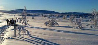 Über Silvester in Norwegen: Skilanglauf im Peer-Gynt-Land