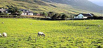 Irland Wanderreisen & Studienreise Irland
