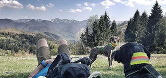Hundewandern in der Slowakei
