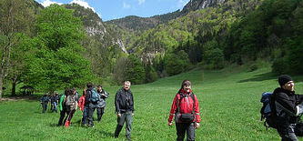 Slowakei Im Nationalpark Mala Fatra